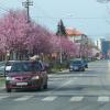 Rumänienreise Karwoche 2016
